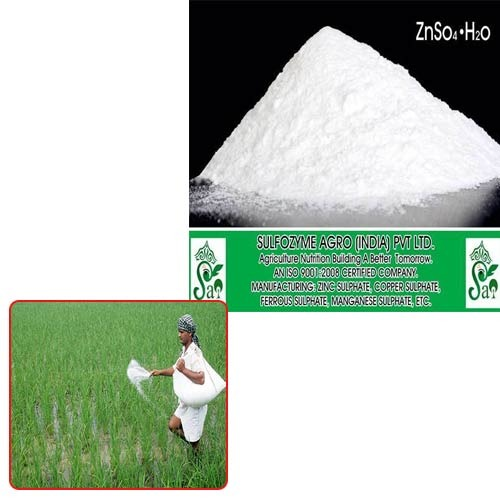 zinc sulphate for agriculture fertilizer at rs 42 kilogram s