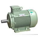 Three Phase TEFC Induction Motor