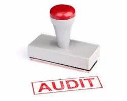Statutory Audits Services