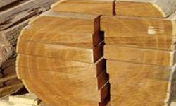 Teak Wood सागवान की लकड़ी Sagwan Wood Manufacturers
