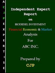 Independent Experts Report