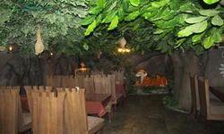 Mogli Jungle Restaurant