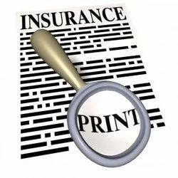 International Insurance Claim Investigation