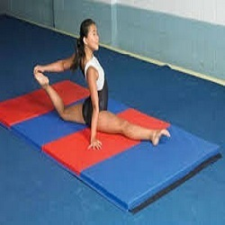 Gymnastics Fitness Club Service