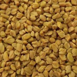 New Fenugreek Seed
