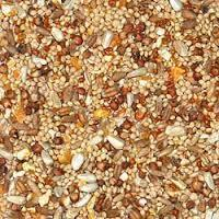 Seeds of Rice, Wheat and Vegetables