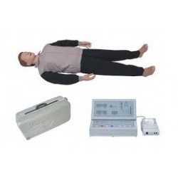 Body CPR Manikin