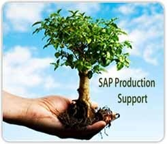 SAP Production Support