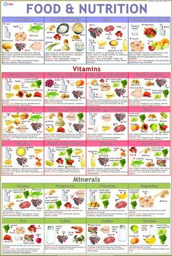 FoodCharts Shikshan Ke Chart  Vidya Chitr Prakashan New Delhi