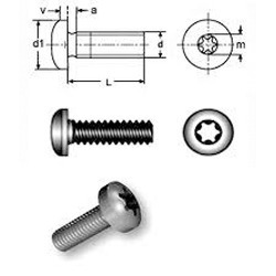 MC Screws Pan Torx Tx Drive SS