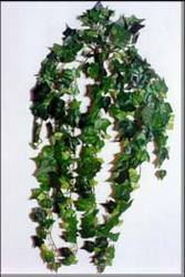 artificial creepers plant - artificial delicate creepers wholesaler