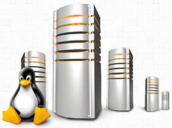 Linux Dedicated Servers