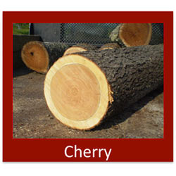 Cherry Elm Wood Logs Cherry Wood Logs Importer From New Delhi