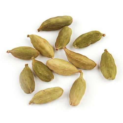 Cardamom in Theni, Tamil Nadu | Cardamom Price in Theni
