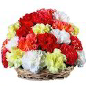 Flower Baskets (Carnation Basket)
