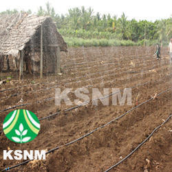 Greenhouse Mist Irrigation System Ask For Price