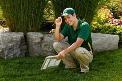 Weed Control Treatment Services