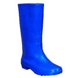 Blue Gumboots