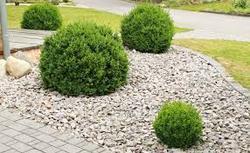 Garden Pebbles At Best Price In India