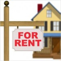 Renting Property Services
