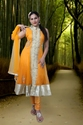 Simple Anarkali Suit