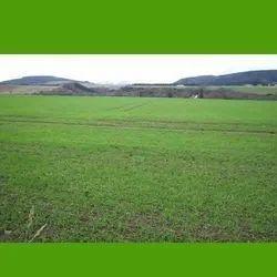 Land Dealing service