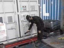 Impex Pest Control & Fumigation Services