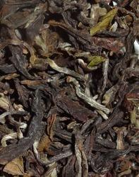 Apple Oolong Tea