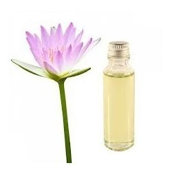 Lotus Essential Oil