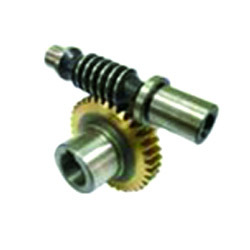 Worm with Worm Gear