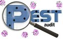 Pest Audit Report
