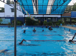 Sdat dolphin swimming academy service provider of race - Swimming pool maintenance training ...