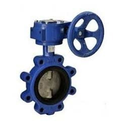 S.S Disc Butterfly Valve