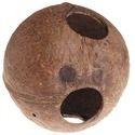 椰子壳鸟屋