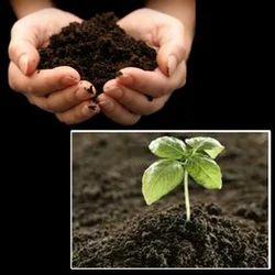 EM Plus Bio Fertilizers