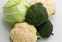 Cauliflower- Cabbage