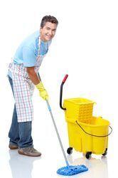 Biodegradable Floor Cleaner