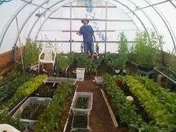 greenhouse design services