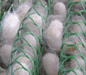 Econet Plastic Netrikas