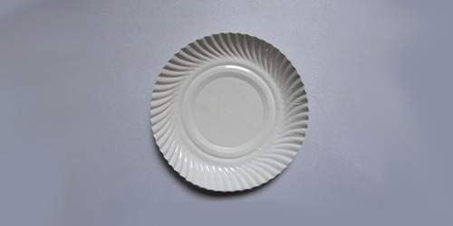 Disposable Paper White Plates