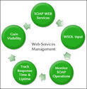 Management Monitoring Services