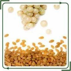 Cake Making Classes In Ghatkopar : Brown Raisins - Suppliers & Manufacturers in India