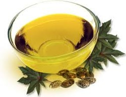 Castor Oil & It' ' s Derivatives Solvent Extraction And Edible