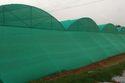 Net House Dome Shape