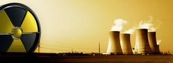 Nuclear Power Project Services