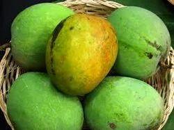 Malgova Mango, आम in Settyhalli Layout, Chik Ballapur , Sri Venkateswara  Traders | ID: 6970926888