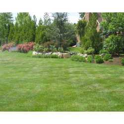 Agriculture Horticulture and Gardening Service