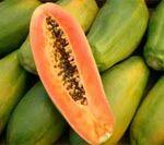 Madhuban Agro Tourism - Service Provider of Fish & Mango ...