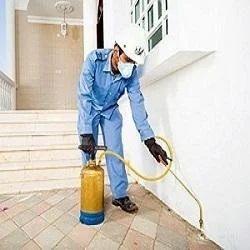 Post Construction Anti Termite Control Services In Sayajigunj Vadodara Techno Best Pest Control Service Id 9914387433