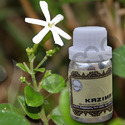KAZIMA Natural Juhi Attar Oils